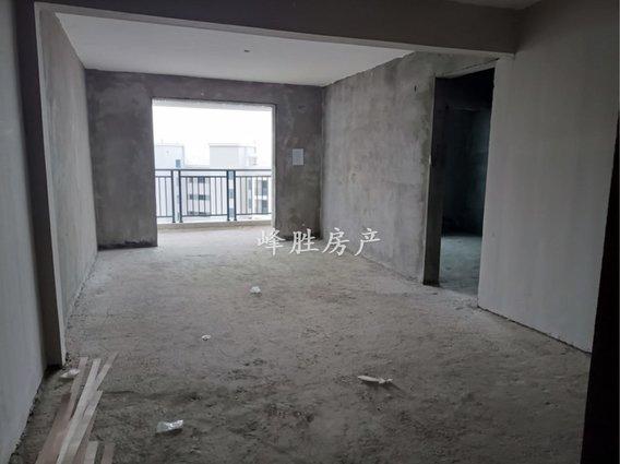 中央城一手新房源,无需过户,直接办一手房手续4600一平