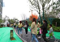 蕲春府|秋天园林之百米画卷活动圆满落幕!