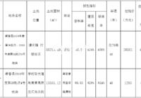 蘄春縣自然資源和規劃局  國有建設用地使用權掛牌出讓公告
