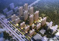 清江大道超高性价比楼盘—泰信·凤凰城