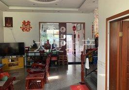夏漕 建材城附近单门独院 2列3层  带前后院 5室3厅