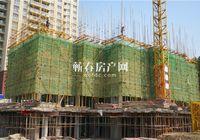 瑞锦东城1月工程进度|共启新程 静待美好绽放