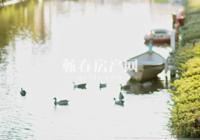 鸿馨·清水湾|你的生活,与河的距离有多远?