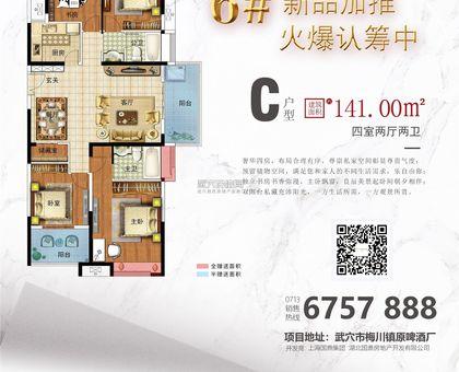国鼎·广济新天地6#楼C户型