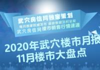 2020年11月武穴楼市月报——楼市动态大盘点