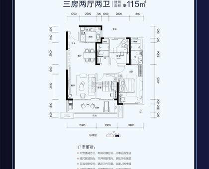武穴碧桂园B户型