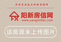 阳新县2020年1-8月份房地产市场运行情况