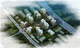 亚兴·国际城