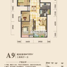 国威·国瑞祥A9户型图