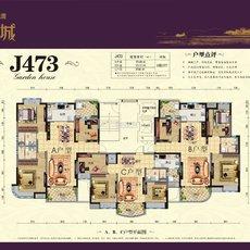 碧桂园·江湾城J473户型图