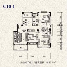 一方山水•塔山城C10-1户型图