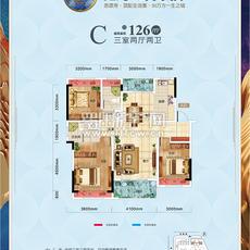 鑫龙·山水国际2号地块 C户型户型图