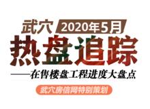 2020年5月武穴在售楼盘工程进度汇总
