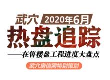 2020年6月武穴在售楼盘工程进度汇总