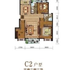东方明珠花苑C2户型户型图