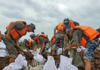 闻汛而动,向雨而行!九坤·新城首府积极支援黄梅县防汛工作