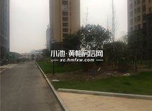 至信滨江国际12月看房日记 彩生活完美社区
