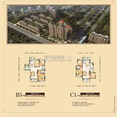 东磁·新城国际花园五期弘府 dc栋b3+c1户型户型图
