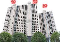 龍璽灣7月工程進度播報   7#、8#樓建至第17層