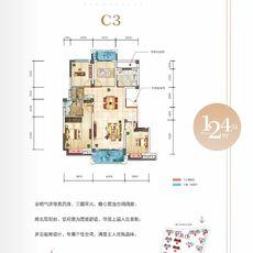 申丰·金色阳光城C3 124.51㎡户型图