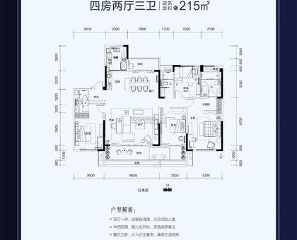 武穴碧桂园YJ190-5户型