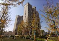 臻心匠筑,大势将成 瑞锦东城11月工程进度播报!
