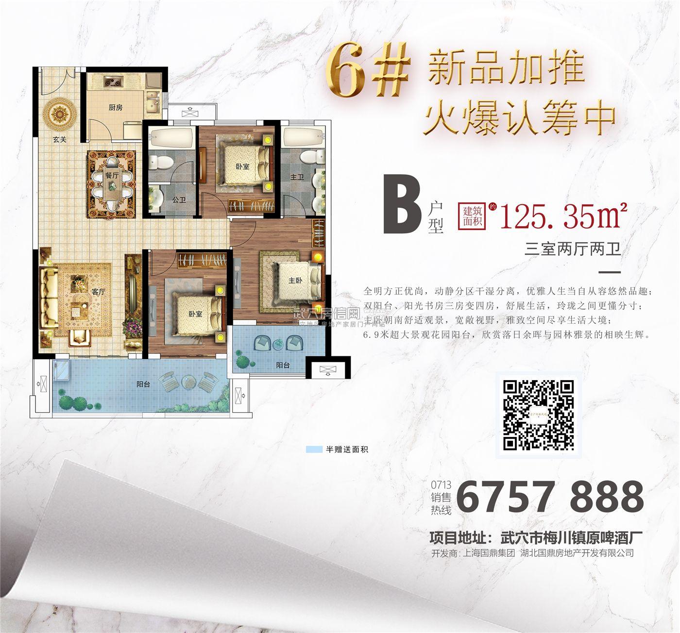 国鼎·广济新天地-6#楼B户型户型