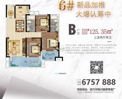 国鼎·广济新天地6#楼B户型