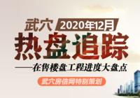 2020年12月武穴在售楼盘工程进度汇总
