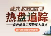 2020年11月武穴在售楼盘工程进度汇总