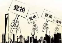 瑞昌市国土资源局国有土地使用权挂牌出让公告(赣国土资网交地[2020]GO013号)