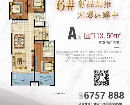国鼎·广济新天地6#楼A户型