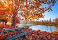 秋季買房的4個理由,看過的都忍不住不買!